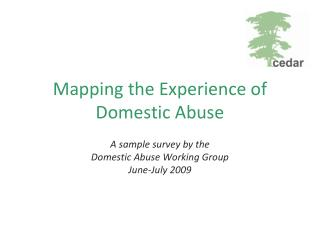 Mapping the Experience of Domestic Abuse