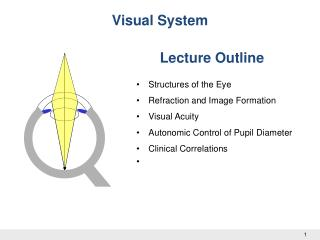 Dr W Kolbinger, Visual System (2009)