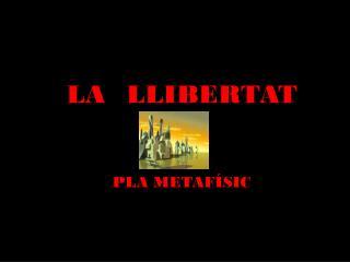 LA   LLIBERTAT PLA METAFÍSIC