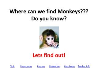 Where can we find Monkeys??? Do you know?