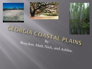 Georgia Coastal Plains