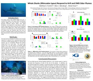 Whale Sharks ( Rhincodon typus ) Respond to  Krill and DMS Odor  Plumes