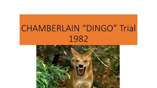"CHAMBERLAIN ""DINGO"" Trial 1982"