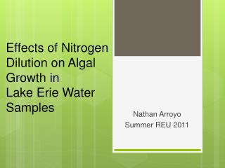 Effects of Nitrogen Dilution on Algal Growth in Lake Erie Water Samples