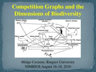 Competition Graphs and the Dimensions of Biodiversity