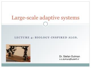 Large-scale adaptive systems