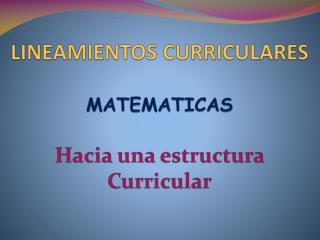 LINEAMIENTOS CURRICULARES  MATEMATICAS Hacia una estructura  Curricular