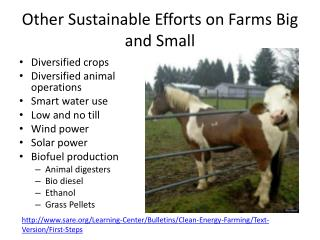 Other Sustainable Efforts on Farms Big and Small
