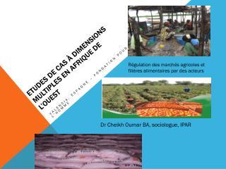 Etudes de cas à dimensions multiples en  afrique  de l'ouest
