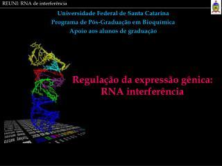 Universidade Federal de Santa Catarina Programa de Pós-Graduação em Bioquímica