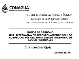 BONOS DE CARBONO: