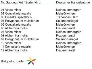 Nr. Gattung / Art / Sorte /  Grp . Deutscher Handelsname 01  Vinca minor kleines Immergrün