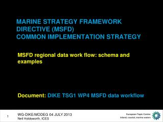 MARINE STRATEGY FRAMEWORK DIRECTIVE (MSFD)  COMMON IMPLEMENTATION STRATEGY