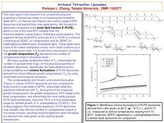 Archaeal Tetraether Liposomes Parkson L.  Chong,  Temple University  ,  DMR 1105277