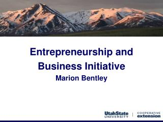 Entrepreneurship and Business Initiative Marion Bentley