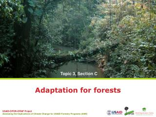 Adaptation for forests