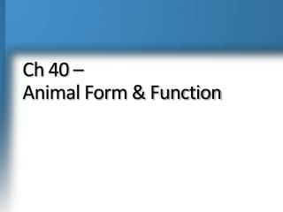 Ch  40 –  Animal Form & Function
