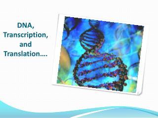 DNA, Transcription, and Translation….