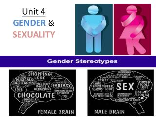 Unit 4  GENDER  &  SEXUALITY