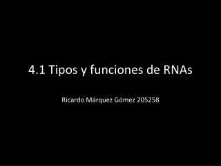 4.1 Tipos y funciones de  RNAs