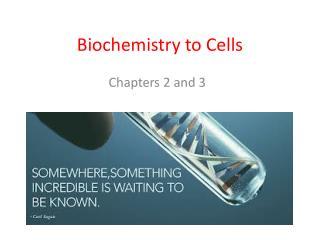Biochemistry to Cells