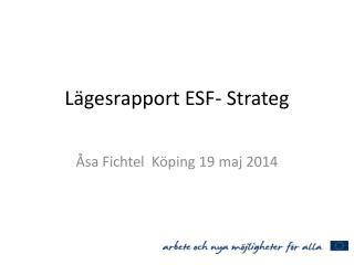 Lägesrapport ESF- Strateg