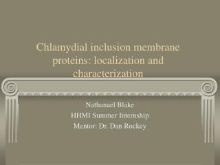 Chlamydial inclusion membrane proteins: localization and characterization