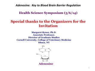 Adenosine:  Key to Blood Brain Barrier Regulation Health Science Symposium ( 5 /6/14)