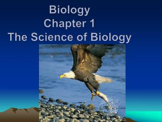 Biology Chapter 1 The Science of Biology