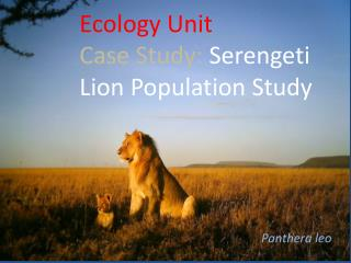 Ecology Unit Case Study:  Serengeti Lion Population Study