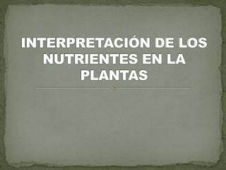 INTERPRETACIÓN DE LOS NUTRIENTES EN LA PLANTAS