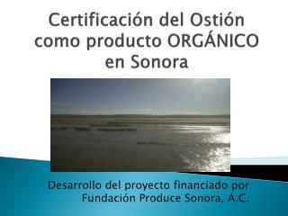 Certificación del Ostión como producto ORGÁNICO en  Sonora