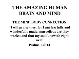 THE AMAZING HUMAN BRAIN AND MIND