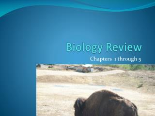 Biology Review