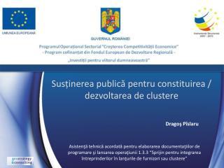 Susținerea publică pentru constituirea / dezvoltarea de clustere