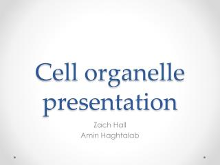 Cell organelle presentation