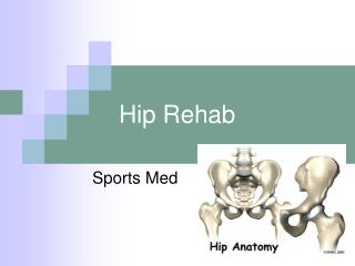 Hip Rehab