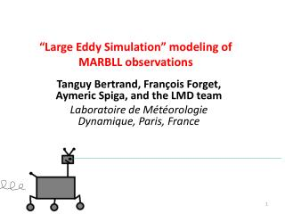 """Large Eddy Simulation"" modeling of MARBLL observations"