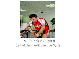 SEHS Topic 2.2 Cont'd S&F of the Cardiovascular System