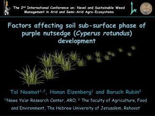 Factors affecting soil sub-surface phase of  purple nutsedge ( Cyperus rotundus ) development
