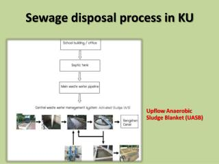 Sewage disposal process in KU