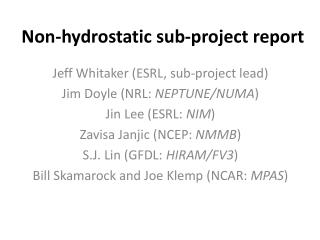 Non-hydrostatic sub-project report