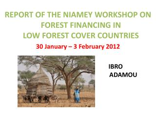 REPORT  OF THE NIAMEY WORKSHOP ON FOREST FINANCING IN  LOW FOREST COVER COUNTRIES