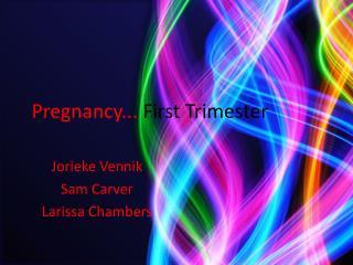 Pregnancy...  First Trimester