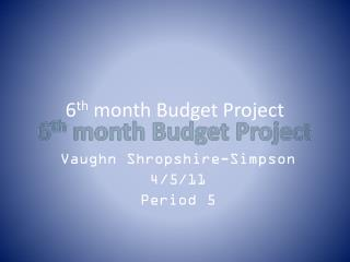 6 th  month Budget Project