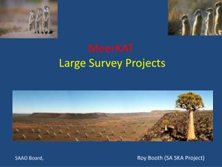 MeerKAT  Large Survey Projects