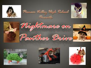 Pioneer Valley High School Presents Nightmare on Panther Drive