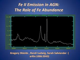 Fe II Emission in AGN: The Role of Fe Abundance