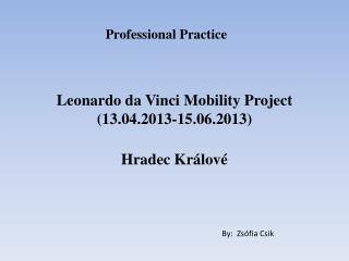 Leonardo da Vinci Mobility Project (13.04.2013-15.06.2013)