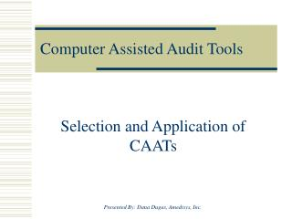 Computer Assisted Audit Tools